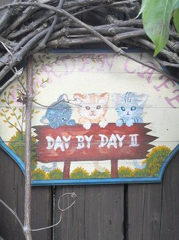 DAY BY DAY II のネコ看板